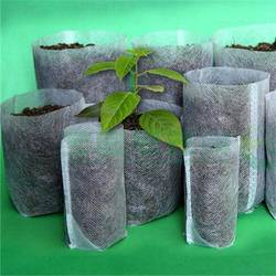 Are-Fabric-Grow-Bags-Reusable