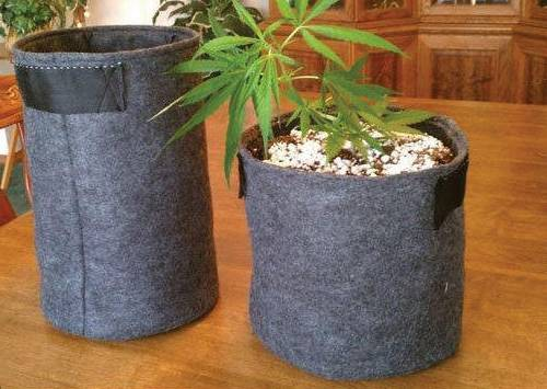 How-Long-do-Fabric-Grow-Bags-Lat