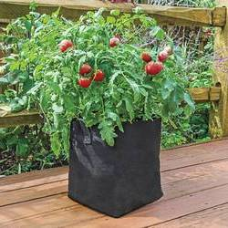 What-Size-Fabric-Grow-Bag-for-Tomatoes