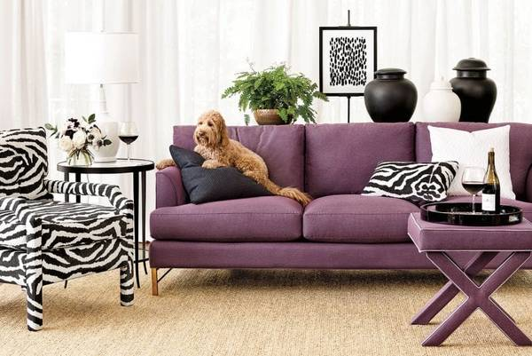 Best-Fabric-for-Couches-With-Dogs-or-Cats-How-To-Choose