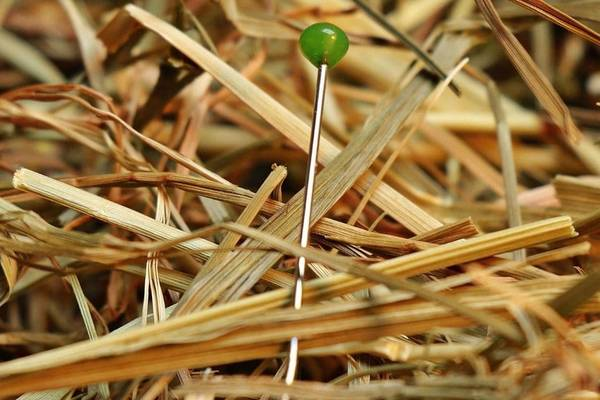 Finding-a-Lost-Needle-Tips-How-to-Find-a-Needle-in-Carpet